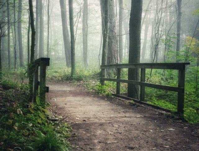 Thờ Phượng Chúa Nhật Ngày 3 Tháng 1, 2021: Chúa Biết Đường Tôi Đi